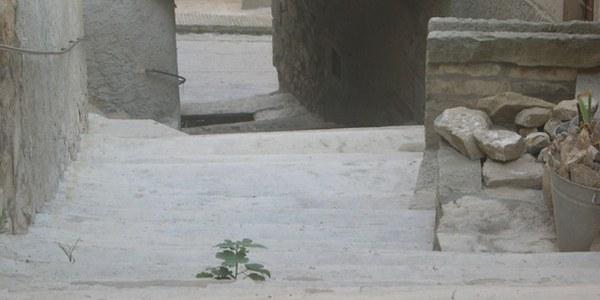 Actuació de pavimentació i serveis al carrer Major d'Els Omells de na Gaia.